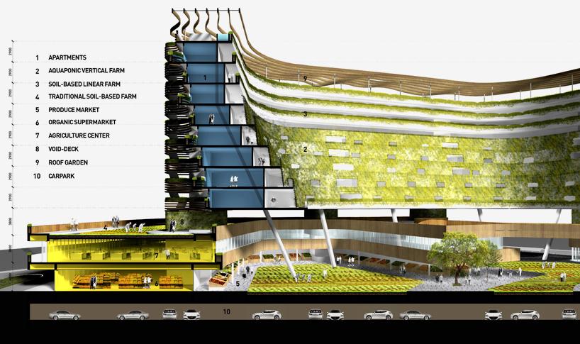 edificio-plantacion-5